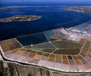 https://www.tp24.it/immagini_articoli/13-03-2019/1552507971-0-acquasal-stagnone-gruppo-cittadini-chiede-lincidenza-ambientale-progetto.jpg