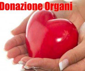 https://www.tp24.it/immagini_articoli/13-06-2018/1528842744-0-donazione-organi-trapani-protocollo-dintesa-diocesi-rete-trapianti.jpg