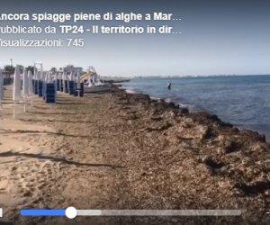 https://www.tp24.it/immagini_articoli/13-06-2019/1560417735-0-marsala-pulizia-spiagge-comune-pacco-delfino-video.png