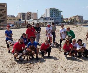https://www.tp24.it/immagini_articoli/13-09-2021/1631544359-0-a-trapani-il-progetto-pelosi-in-spiaggia.jpg