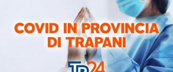 https://www.tp24.it/immagini_articoli/13-10-2021/1634129666-0-meno-di-600-positivi-in-provincia-di-trapani-i-numeri-sul-covid-aggiornati.jpg