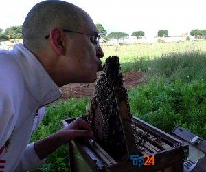 https://www.tp24.it/immagini_articoli/14-02-2021/1613340184-0-marsala-l-uomo-delle-api.jpg