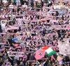 https://www.tp24.it/immagini_articoli/14-05-2019/1557811683-0-calciopalermo-sogno-serie-allincubo.png