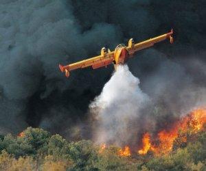 https://www.tp24.it/immagini_articoli/14-05-2020/1589439090-0-soffia-forte-lo-scirocco-decine-di-incendi-in-sicilia.jpg