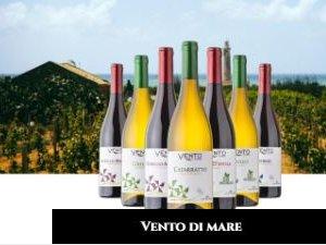 https://www.tp24.it/immagini_articoli/14-06-2020/1592104022-0-vini-nbsp-cantine-ermes-prima-in-sicilia-per-fatturato.jpg