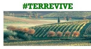 https://www.tp24.it/immagini_articoli/14-08-2015/1439526247-0-terreni-agricoli-dello-stato-in-sicilia-on-line-il-bando-per-la-vendita.jpg