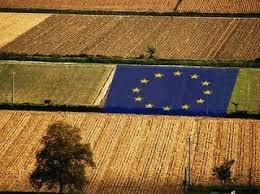 https://www.tp24.it/immagini_articoli/15-01-2020/1579069405-0-mani-mafia-fondi-europei.jpg