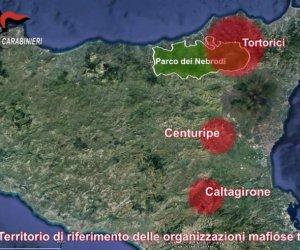 https://www.tp24.it/immagini_articoli/15-01-2020/1579090845-0-sicilia-volto-moderno-mafia-pascoli.jpg