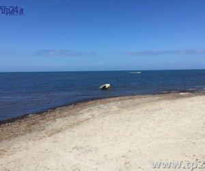 https://www.tp24.it/immagini_articoli/15-07-2017/1500132987-0-marsala-protestano-bagnanti-fortino-perche-puliscono-spiaggia-libera.jpg