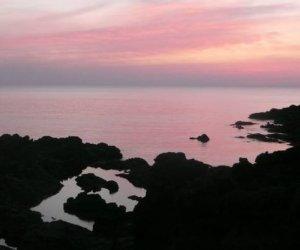https://www.tp24.it/immagini_articoli/15-08-2014/1408088288-0-passitaly-rassegna-dedicata-vini-passiti-del-mediterraneo-a-pantelleria.jpg