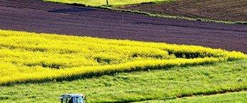 https://www.tp24.it/immagini_articoli/15-08-2019/1565826297-0-agricoltura-sicilia-trenta-milioni-euro-pronti-sviluppo-aree-interne.jpg
