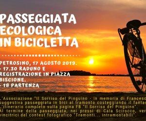 https://www.tp24.it/immagini_articoli/15-08-2019/1565880166-0-passeggiata-ecologica-bicicletta-petrosino-sorriso-pinguino.png