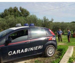 https://www.tp24.it/immagini_articoli/15-10-2019/1571123686-0-tornano-ladri-olive-arrestati-quattro-erice.jpg