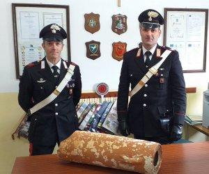 https://www.tp24.it/immagini_articoli/16-04-2019/1555395495-0-trapani-trova-unanfora-punica-marausa-consegna-carabinieri.jpg