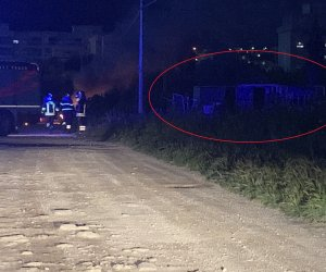 https://www.tp24.it/immagini_articoli/16-04-2019/1555401228-0-trapani-incendio-doloso-villa-rosina-salvati-cani-chiusi-baracche.jpg