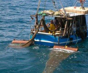 https://www.tp24.it/immagini_articoli/16-06-2014/1402933899-0-amp-egadi-e-pescatori-al-ministero-autorizzateci-a-usare-il-tartarune.jpg