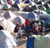 https://www.tp24.it/immagini_articoli/16-06-2019/1560720907-0-raggiunto-accordo-laccoglienza-migranti-stagionali-campobello.jpg