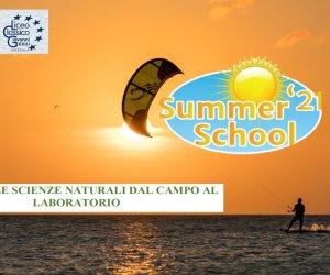 https://www.tp24.it/immagini_articoli/16-09-2021/1631809388-0-l-estate-del-liceo-classico-di-marsala-alla-scoperta-dello-stagnone.jpg