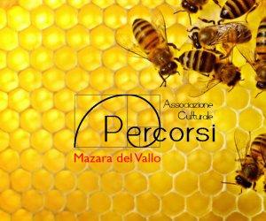 https://www.tp24.it/immagini_articoli/17-01-2019/1547683588-0-mazara-secondo-corso-apicolutura.jpg