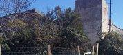 https://www.tp24.it/immagini_articoli/17-02-2018/1518848185-0-strage-cani-avvelenati-sciacca-sono-trenta-cane-scuoiato-campobello.jpg