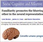 https://www.tp24.it/immagini_articoli/17-09-2013/1379491772-1-cervello-umano-programmato-per-empatia.jpg
