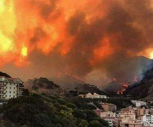https://www.tp24.it/immagini_articoli/17-09-2021/1631855776-0-incendi-in-sicilia-tutte-le-accuse-alla-regione-nbsp.jpg