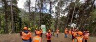 https://www.tp24.it/immagini_articoli/17-10-2021/1634460559-0-forestali-al-via-la-formazione-in-sicilia-apicoltura-ok-allo-stato-di-calamita.jpg