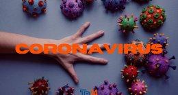 https://www.tp24.it/immagini_articoli/18-01-2021/1610929894-0-coronavirus-risultati-confortanti-dallo-nbsp-screening-nel-trapanese-su-17-944-tamponi-nbsp-189-positivi-nbsp.png