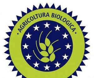 https://www.tp24.it/immagini_articoli/18-05-2015/1431927022-0-sicilia-prorogato-il-bando-per-gli-aiuti-all-agricoltura-biologica.jpg