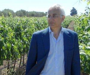 https://www.tp24.it/immagini_articoli/18-05-2020/1589837970-0-nbsp-vini-sebastiano-di-bella-e-il-nuovo-presidente-dell-irvo-nbsp.jpg