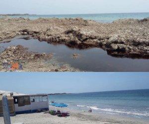 https://www.tp24.it/immagini_articoli/18-06-2018/1529337162-0-petrosino-ripulita-spiaggia-torrazza.jpg