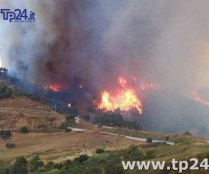 https://www.tp24.it/immagini_articoli/18-07-2017/1500356238-0-incendi-fiamme-divorano-bosco-angimbe-calatafimi-danni-anche-castellammare.jpg