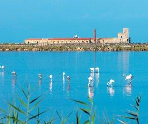https://www.tp24.it/immagini_articoli/18-07-2020/1595085388-0-sicilia-occidentale-vacanze-fuori-rotta-tra-riserve-naturali-e-spiagge-d-oro.jpg