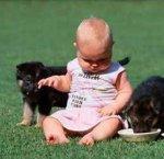 https://www.tp24.it/immagini_articoli/18-09-2013/1379491772-1-bambini-attenzione-ai-morsi-di-animali.jpg