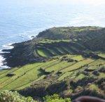 https://www.tp24.it/immagini_articoli/18-11-2016/1479449220-0-passitaly-e-la-difficile-vendemmia-2016-di-pantelleria.jpg