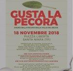 https://www.tp24.it/immagini_articoli/18-11-2018/1542529178-0-santa-ninfa-piazza-gusta-pecora-programma.jpg