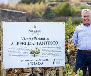 https://www.tp24.it/immagini_articoli/19-01-2018/1516350328-0-benedetto-renda-corso-valorizzazione-pantelleria-suoi-vini.jpg