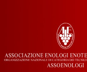 https://www.tp24.it/immagini_articoli/19-02-2014/1392826920-0-assoenologi-sicilia-a-marsala-una-giornata-di-studio-su-quattro-varieta-autoctone.png