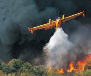 https://www.tp24.it/immagini_articoli/19-05-2018/1526724639-0-prevenzione-incendi-prefettura-trapani-protezione-civile-forze-dellordine-insieme.jpg