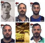 https://www.tp24.it/immagini_articoli/19-06-2018/1529385242-0-banda-palermitani-coltivava-droga-poggioreale-cinque-arresti.jpg