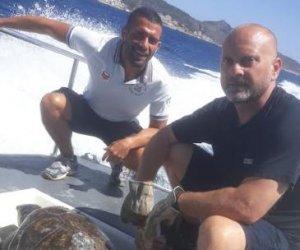 https://www.tp24.it/immagini_articoli/19-06-2019/1560942925-0-levanzo-tartaruga-caretta-caretta-soccorsa-cala-minnola-video.jpg