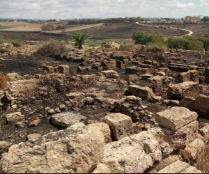 https://www.tp24.it/immagini_articoli/19-08-2018/1534709863-0-incendio-parco-archeologico-selinunte-fiamme-anche-reperti-forse-inneschi.jpg