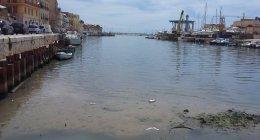 https://www.tp24.it/immagini_articoli/19-10-2021/1634636622-0-dragaggio-del-porto-di-mazara-le-verita-dell-ex-coadiutore-del-direttore-dei-lavori-2.jpg