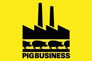 https://www.tp24.it/immagini_articoli/19-12-2011/1379528018-1-ambiente-e-alimentazione-vegetariana-due-facce-della-stessa-medaglia.jpg