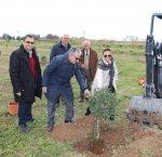 https://www.tp24.it/immagini_articoli/20-02-2019/1550692117-0-marsala-alberi-parco-salinella-sindaco-incontra-vincenzo-accardi.jpg