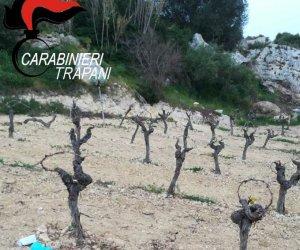 https://www.tp24.it/immagini_articoli/20-03-2019/1553083018-0-marsala-massacro-nicoletta-racconto-carabinieri-bonetta-confessato.jpg