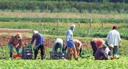 https://www.tp24.it/immagini_articoli/20-04-2021/1618909807-0-permessi-immigrati-nbsp.jpg
