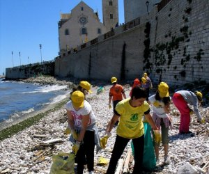 https://www.tp24.it/immagini_articoli/20-05-2014/1400606659-0-legambiente-operazione-spiagge-e-fondali-puliti-2014-con-tappa-a-selinunte-e-favignana.jpg
