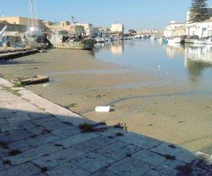 https://www.tp24.it/immagini_articoli/20-09-2019/1569000980-0-fanghi-porto-mazara-replica-biosurvey-verita-unaltra.jpg