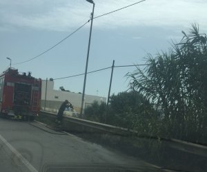 https://www.tp24.it/immagini_articoli/20-10-2019/1571556384-0-marsala-incendio-lungomare-mediterraneo-fumo-invade-strada.jpg